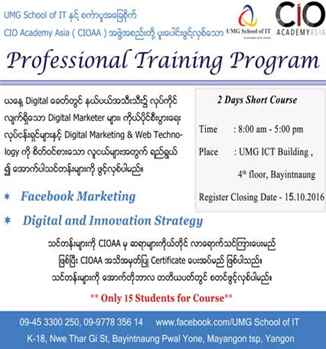 Digital and Innovation Strategy and Facebook Marketing Course