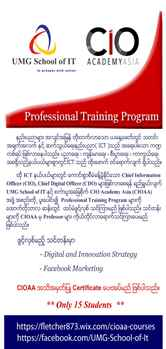 Professional Training Program